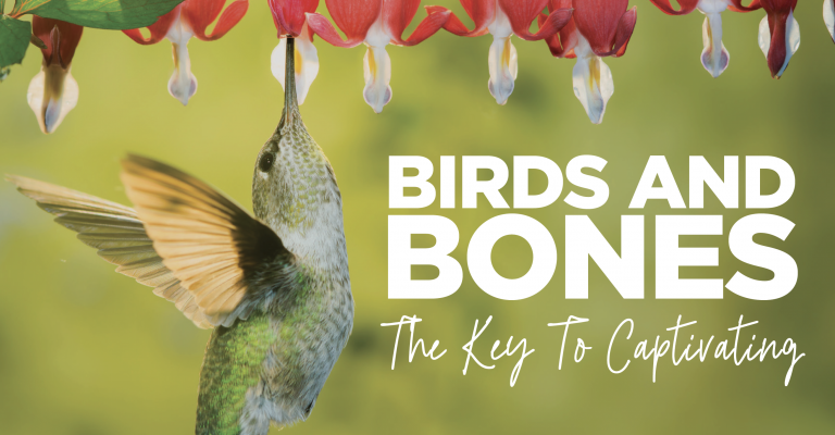 Birds and Bones…the Key to Captivating