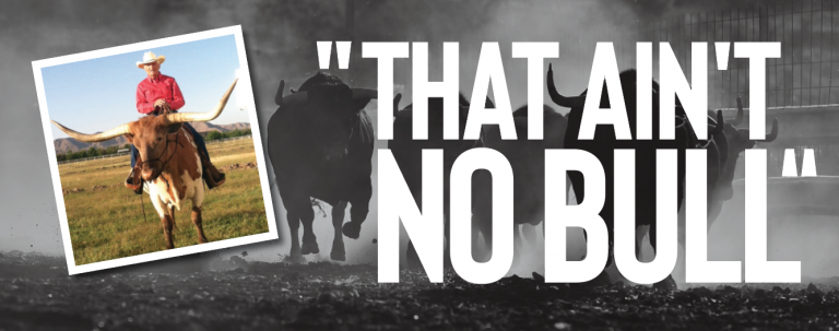 Read more about the article That Ain't No Bull